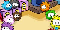Pet Shop Puffles Background