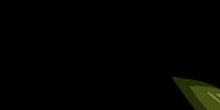 The Melon Head