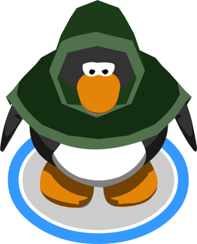 File:Green Hooded Cloak in-game.PNG