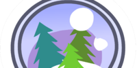 Snow Globe Pin