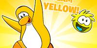 Go Yellow Background