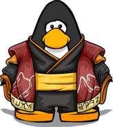 Volcanic Robes on Player Card