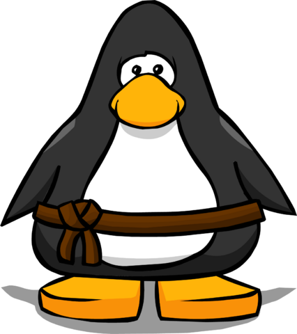 File:Brown Belt on a Player Card.png