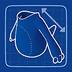 Blueprint Tricera Tummy icon