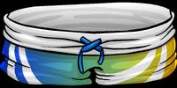 Blue Surf Shorts
