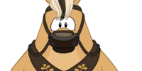 Hans' Horse