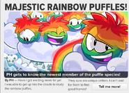 Majestic Rainbow Puffles 1