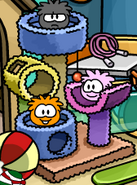 Puffle Tower in Pet Shop