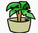 Pin da Planta
