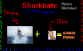 Thumbnail for version as of 15:23, April 11, 2009