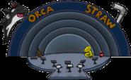 Orca Straw Music Jam 2009