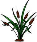 Bulrushes furniture icon ID 532