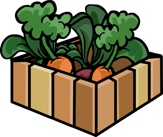 File:Box of Carrot Plants.png