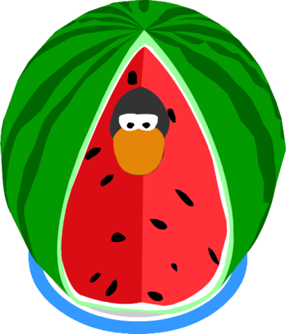 File:Watermelon Costume IG.png