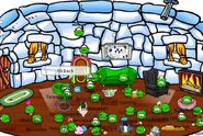 CPIP Igloo
