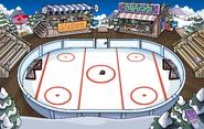 Ice Rink 2013