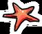 Starfish Pin