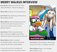 Merry Walrus interview