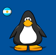 Argentina Flag on a Player Card