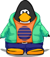 Antarctic Sun Outfit on a Player Card