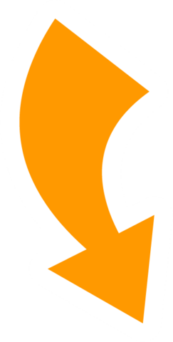 File:CJ reverse icon.png