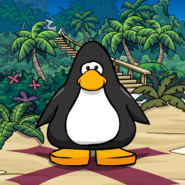 Treasure Cove background on a Player Card