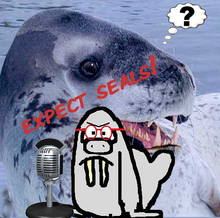 EXPECT SEALS