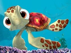 Squirt image