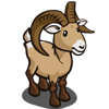 Big Horn Sheep-icon