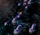 Graveyard of a Foolish Fleet