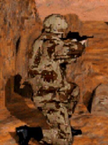 File:CNCT Desert Combat Uniform.jpg