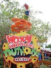 Woodywoodpecker