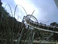 CorkscrewAltonTowers2