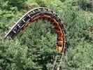 Dragon Mountain Bowtie