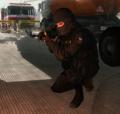 120px-Internal troops 2