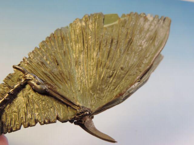 File:Dragon wings 10.jpg