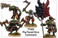 TT403 Pig Faced Orc Command