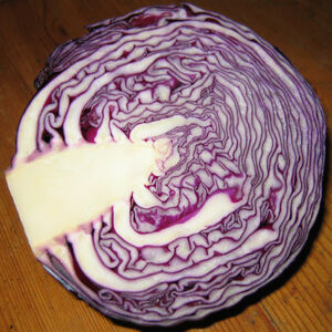 Red+cabbage-9230