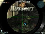 Nutshot 2