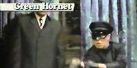 DC COMICS: Batman Family (Batman 66) Green Hornet commerical