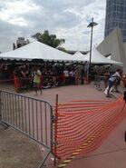 Sdcc2014-crowds2