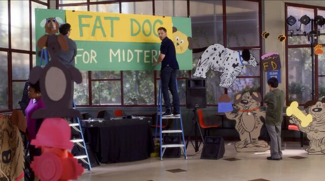 File:Turning Bears into Fat Dogs.jpg