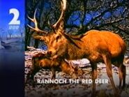 BBC2 Rannoch the Red Deer