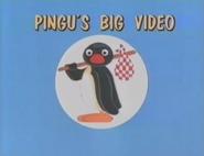 Pingu's Big Video