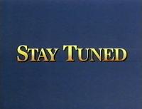 Stay Tuned Disney 1993-1996 Bumper
