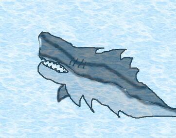 Sharkillia