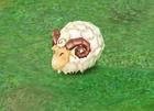 File:Cuddly Lamb.jpg