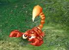 File:Baby Scorpion.jpg