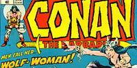 Conan the Barbarian 49