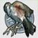 File:Silverbird.jpg